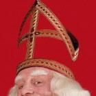 Sinterklaas bestaat! Het boek van Bram van der Vlugt