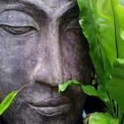 Boekrecensie: Boeddhistische meditatie voor beginners