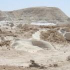 Boekrecensie: Israël, land van verleden en toekomst-A. Gonen