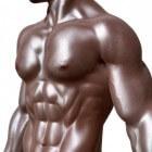 Testosteronbooster: bijwerkingen, voordelen en de nadelen