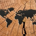 Cartografie: verzamelen van landkaarten en atlassen