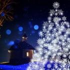 Zelf een alternatieve kerstboom maken van hout en boomtakken