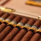 Cohiba: de Rolls Royce van Cubaanse sigaren