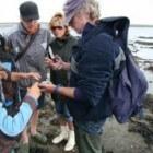 Vissen en wadexcursie met wadgids Harmen Wijnberg