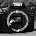 Zelf reinigen van de sensor van een spiegelreflexcamera