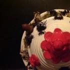 Vogelhuisje van terracotta