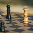 Het schaakbord: uitleg voor de beginnende schaker