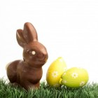 Pasen: eieren verven
