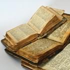 Genealogie: wie zijn jouw voorouders?