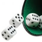 Een simpel maar zeer leuk gezelschapsspel: blufpoker!