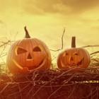 Halloween Spelletjes Volwassenen.Halloween Quiz Voor Volwassenen Monsters In Boek En Verhaal